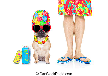 two on vacation - french bulldog dog and owner ready to go...