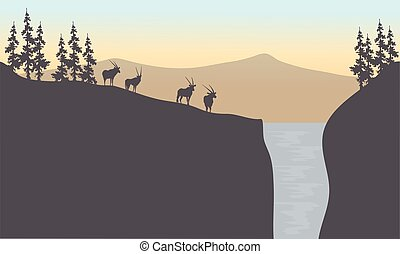 Silhouette of antelope in waterfall at sunset