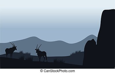 Antelope in hills silhouette