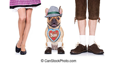 bavarian dog - french bulldog dog with gingerbread heart and...
