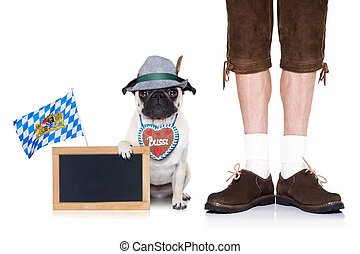 bavarian dog - pug dog with gingerbread heart and bavarian...