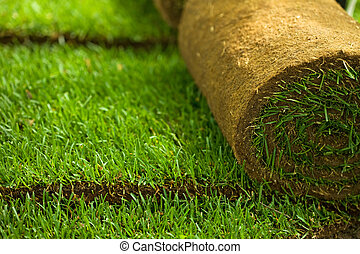 Turf grass rolls closeup - Green turf grass roll and...