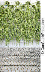vertical green plant pattern in many black pot and cobble...