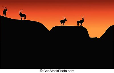 Silhouette of antelope on mountain at the afternoon