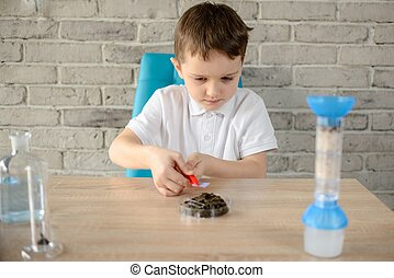 Little 6 year old boy examines the ph of the soil at home