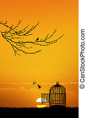 cage for birds at sunset - illustration of cage for birds at...