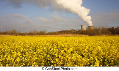 Wildflowers Exists Under Exhaust Plume Nuclear Power Plant Alternative Energy
