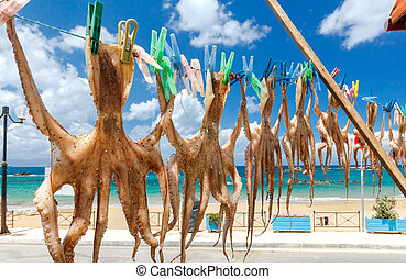 Chania. Drying octopus. - Drying octopus on the clothesline...