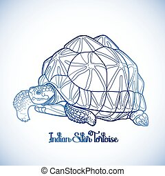 Indian star tortoise - Graphic Indian star tortoise drawn in...