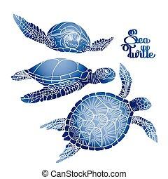 Hawksbill sea turtle collection - Graphic Hawksbill sea...