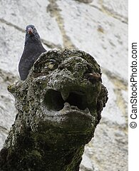 Gargoil - a detail of a gargoil