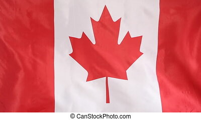 Textile flag of Canada moving in the wind