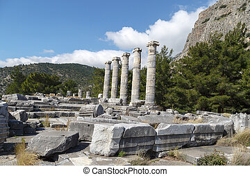 Priene Ancient City - General temple view of Priene Ancient...