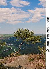Lilienstein - Saxon Switzerland, GERMANY rock nature...