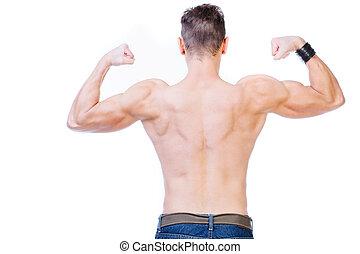 背, 肌肉, 人
