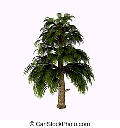Archaeopteris Tree - Archaeopteris is one of Earth's...