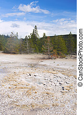 Vixen Geyser is about to erupt Norris Geyser Basin,...