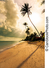 Morning on the beach of Bang Po Samui Island Thailand