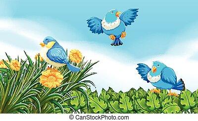 Birds flying in the garden illustration