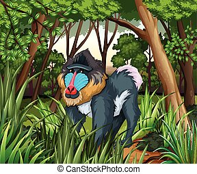 Baboon living in the dark forest illustration