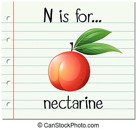 Flashcard letter N is for nectarine illustration