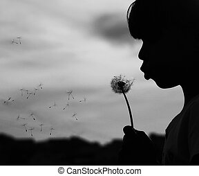 silhouette of a girl with dandelion - a silhouette of a girl...