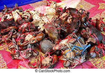 Serrated mud crab, Mangrove crab, Black crab, Giant mud...