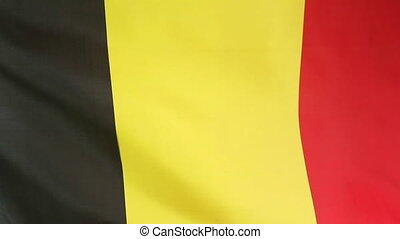 Moving flag of Belgium - Closeup of moving flag of Belgium