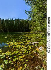 Snake Lake in Durmitor - Montenegro - nature travel...