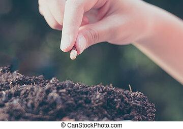 plantar, sobre, mão, meio ambiente, verde, fundo, criança, semeando