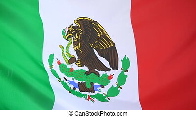 Closeup of a textile flag of Mexico
