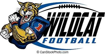 wildcat football - muscular wildcat football player team...