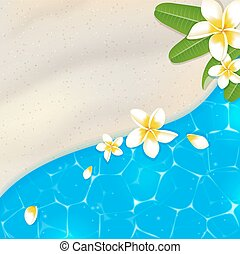 Sandy beach and blue sea water Tropical vector background...