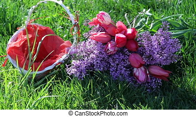 lilac flowers and tulip basket on a background of green grass