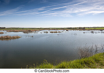 Wetlands in La Mancha - Wetlands associated with de River...