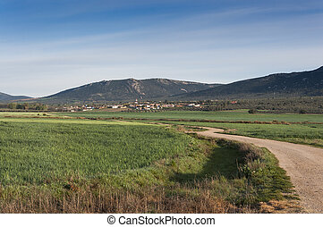 Small hamlet in an agricultural landscape in La Mancha,...