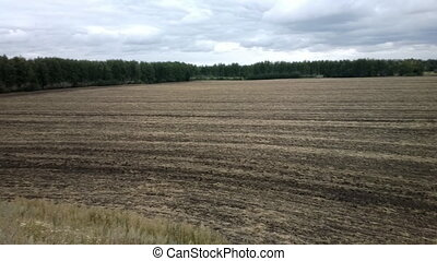 Ploughed, after harrowing field on edge of forest