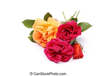bouquet of roses isolated on white