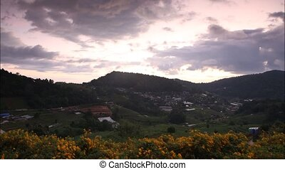SUN - Time lapse sunset morning with flower Tung Bua Tong...