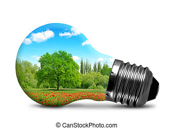 Lightbulb isolated on white - Lightbulb with a trees in...
