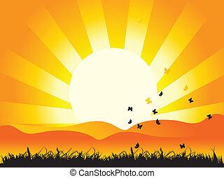 Landscape, nature, grass and butterflies, sun
