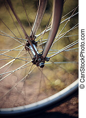 Forward wheel of the bicycle - Forward wheel of the bicycle...