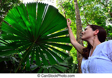 Woman touches a Palm tree leaf in Queensland Australia -...