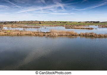 Wetlands in La Mancha - Wetlands associated with de River...