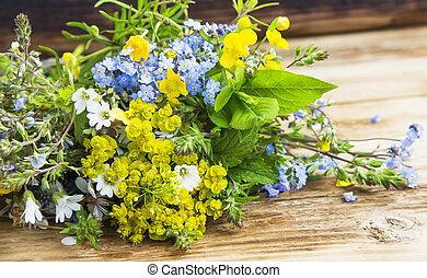 Medicinal plants bouquet - Medicinal plants and flowers...