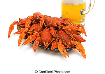 Boiled crawfish on a plate on a white background. horizontal...