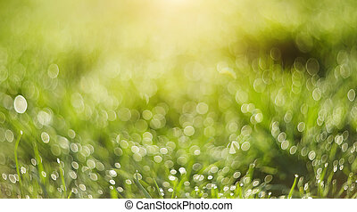 Abstract Blurred green background