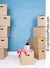 Removal house - Toast on removal house with boxes and wine