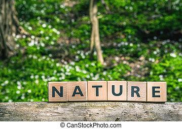 簽署, 綠色, 森林, 自然