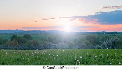 summer sunset - beautiful summer sunset landscape in...